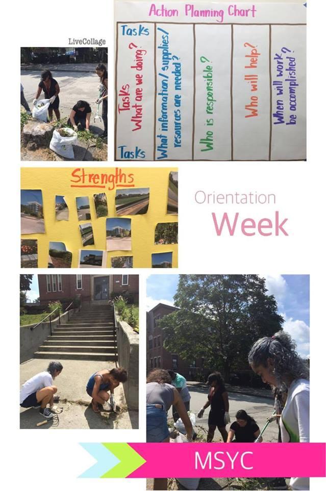 Orientation Week 2016